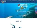 Plongée Mykonos Diving Center - Paradise beach