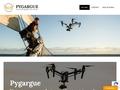 Pygargue - Prises de vue aérienne