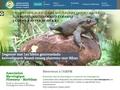 Association mycologique de Ploemeur - Morbihan