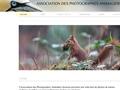 Association des photographes animaliers bretons