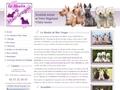 West highland white terrier du Moulin de Mac Gregor