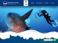 Ga naar www.enadive.co.id