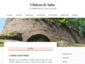 Château de Salm UN CHÂTEAU FORT ENTRE ALSACE ET LORRAIN
