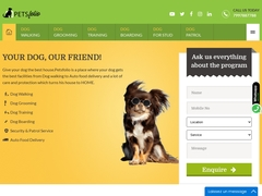 Dog Walking Services | Pet Walking Services | Dog Walkers - Petsfolio