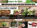 La Sphaigne du Chili