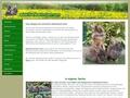 Erhaltung des Bartkaninchen | www.bartkaninchen.com