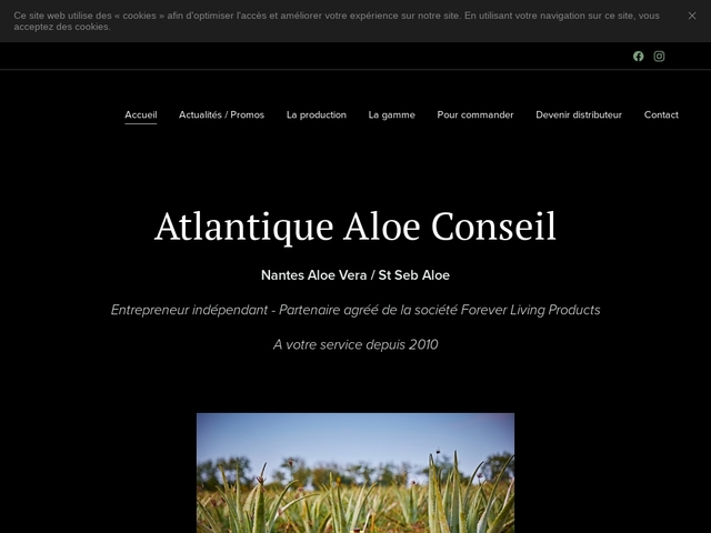 Nantes Aloe Vera
