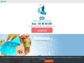 CCI : société de lavage de Vitres à Knokke