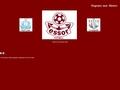 Site officiel de l'ESSOR