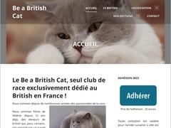 Be a British Cat