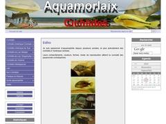 Aquamorlaix