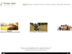 Mystères canins (éducatrice canine)