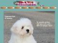 coton de tulear, chiot coton, coton dogs, coton chiens