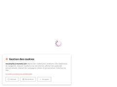 Moi, Moustache, Chien-soldat des armées napoléoniennes