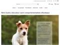 Rémi Guérin - Comportementaliste et Educateur canin à Bordeaux en Gironde
