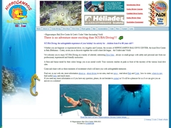 Plongée Hippocampos - Bali  - Crète