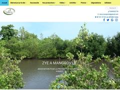 Zye a Mangrov La