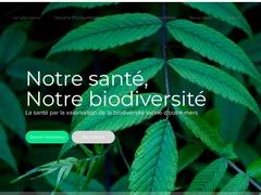 Phytobokaz