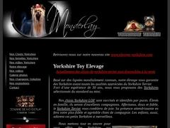 Elevage de Yorkshire Terriers du domaine de Monderlay
