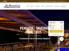 Bacchus - 3 Keys Hotel - Archea Pissa - Ancient Olympia - Peloponnese
