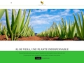 forever living products aloe international