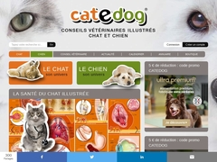 Cat e Dog