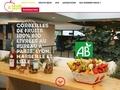 Détails : Livraison de corbeilles de fruits au bureau : Pause fruitée