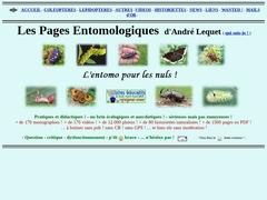 Les pages entomologiques d'André LEQUET