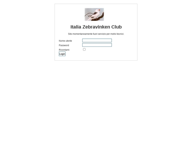 Italian Club of the zebrafinch
