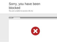 Gobierno - Comisión Federal de Electricidad CFE