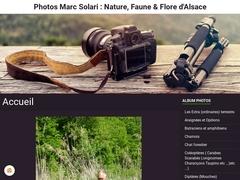 Photos Nature, Faune & Flore d'Alsace - Marc Solari