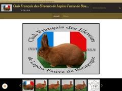 CFELFB.Club Fr.ançais des Eleveurs de Lapins Fauve de Bourgogne