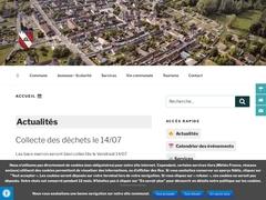 Flagy