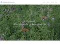 Luzerne et biodiversité