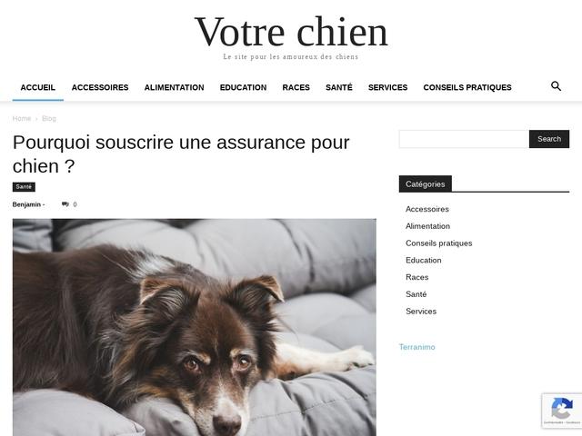 Votre Chien.com