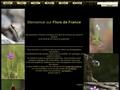 Flore de France