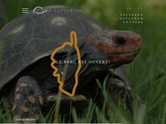 A cupulatta La cité des tortues